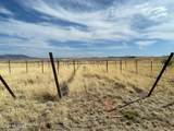 55 Camino Del Corral - Photo 39