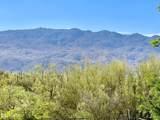 13005 Cape Horn Drive - Photo 45