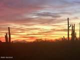 13005 Cape Horn Drive - Photo 49