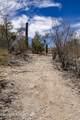 6401 Camino Katrina - Photo 21