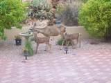 38062 Desert Bluff Drive - Photo 8