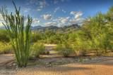 4520 Tierra Alta Drive - Photo 8