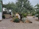 9065 Rincon Mesa Drive - Photo 4