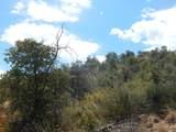 13 Acres Off Paseo Redondo - Photo 11