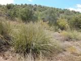 13 Acres Off Paseo Redondo - Photo 14