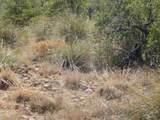 13 Acres Off Paseo Redondo - Photo 15