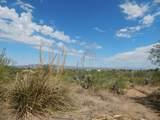 13 Acres Off Paseo Redondo - Photo 19