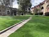 451 Yucca Court - Photo 23