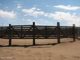 9150 Walnut Trail - Photo 25