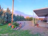 24460 Chickasha Trail - Photo 18