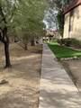 451 Yucca Court - Photo 26