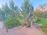 24460 Chickasha Trail - Photo 12