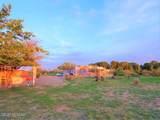 24460 Chickasha Trail - Photo 24