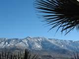 38451 Desert Bluff Drive - Photo 6