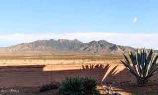 4967 S Gloria View Court, Green Valley, AZ 85622 (#21708536) :: Keller Williams Southern Arizona