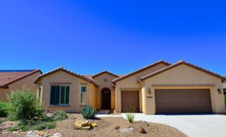 32552 S Egret Trail, Oracle, AZ 85623 (#21713684) :: Long Realty - The Vallee Gold Team