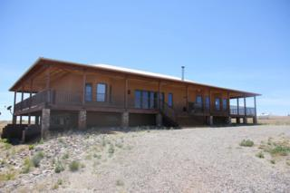 139 Lower Elgin Road, Elgin, AZ 85611 (#21713711) :: Long Realty - The Vallee Gold Team