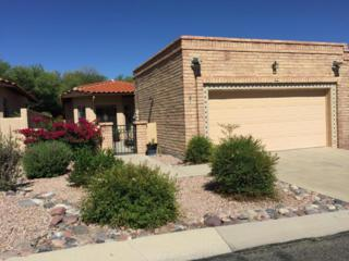 204 E Crooked Stick Drive, Oro Valley, AZ 85737 (#21713731) :: Long Realty - The Vallee Gold Team