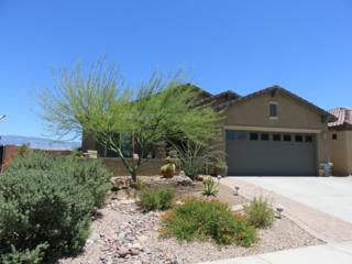 14025 E Barouche Drive, Vail, AZ 85641 (#21713855) :: Long Realty - The Vallee Gold Team