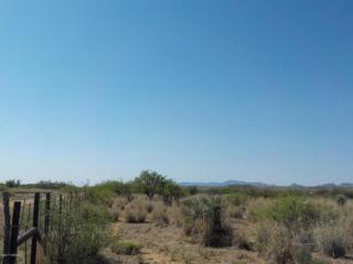 38ac W Talking Wind (Lot #16) Trail, Willcox, AZ 85643 (#21713862) :: Long Realty - The Vallee Gold Team