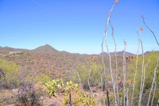 7001 W El Camino Del Cerro, Tucson, AZ 85745 (#21713863) :: Long Realty - The Vallee Gold Team