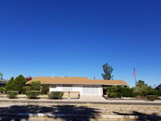 533 N Sarnoff Drive, Tucson, AZ 85710 (#21713865) :: Long Realty - The Vallee Gold Team
