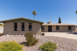 9755 E Colette Street, Tucson, AZ 85748 (#21713873) :: Long Realty - The Vallee Gold Team