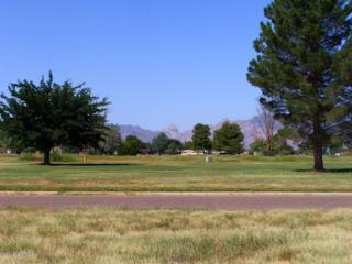 1 Golf Lot # 54 On Geneva, Pearce, AZ 85625 (#21227944) :: Long Realty - The Vallee Gold Team