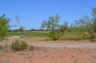 TBD W Fairway View Road, Bisbee, AZ 85603 (#21602513) :: Long Realty - The Vallee Gold Team