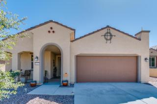 14147 N Lava Falls Trail, Marana, AZ 85658 (#21713625) :: Long Realty - The Vallee Gold Team