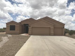 10089 N Tall Cotton Drive, Marana, AZ 85653 (#21713783) :: Long Realty - The Vallee Gold Team
