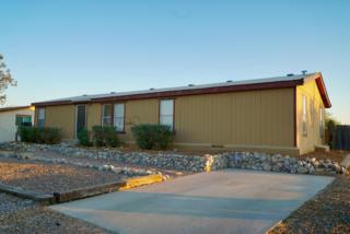 13493 N Warfield Circle, Marana, AZ 85658 (#21713813) :: Long Realty - The Vallee Gold Team