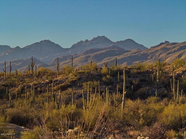13020 E Placita Cantil #26, Tucson, AZ 85749 (#21405886) :: The Josh Berkley Team