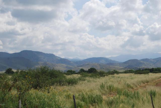 Turkey Creek Road, Pearce, AZ 85625 (#21528866) :: Long Realty Company