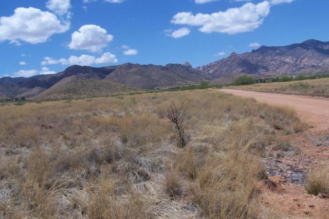 1.13ac Desert Road, Pearce, AZ 85625 (#21612465) :: RJ Homes Team
