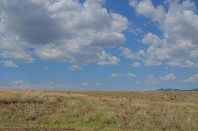 20 La Montana Court, Sonoita, AZ 85637 (#21620835) :: The Josh Berkley Team