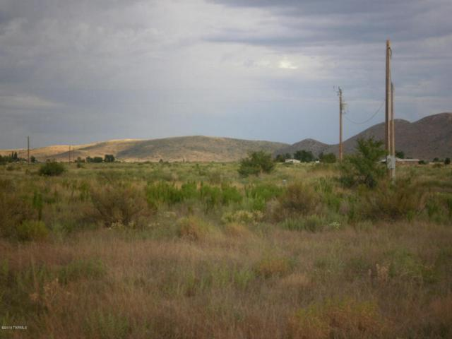 6177 E Pueblo Drive, Pearce, AZ 85625 (#21621047) :: My Home Group - Tucson