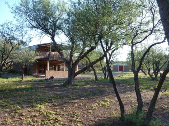 21 Franklin Lane, Sonoita, AZ 85637 (#21701568) :: Long Realty - The Vallee Gold Team