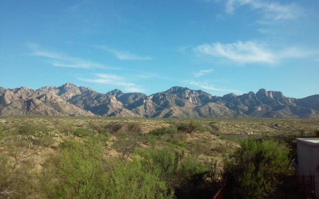 14310 N Bowman Road, Catalina, AZ 85739 (#21702068) :: Long Realty Company