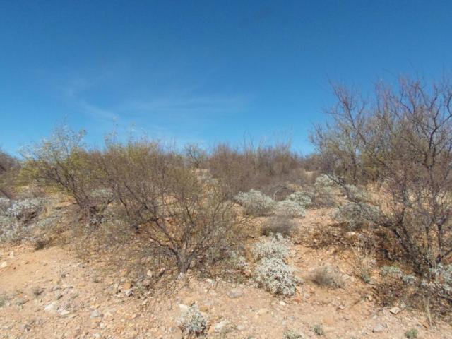 0 W Camino Cinco, Green Valley, AZ 85622 (#21703491) :: RJ Homes Team