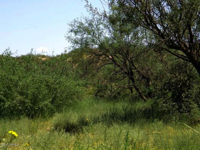 Lot 019G N Off Cascabel Road 019G, Benson, AZ 85602 (#21707389) :: Long Realty Company