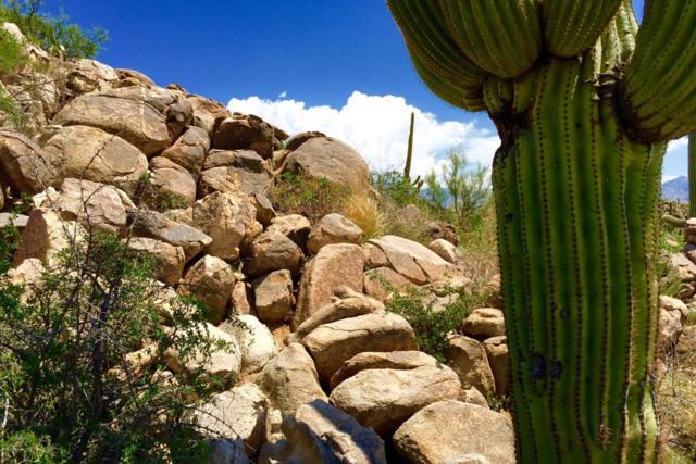 1305 W Tortolita Mountain Circle #407, Oro Valley, AZ 85755 (#21707566) :: Long Realty - The Vallee Gold Team