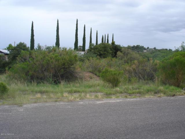 1380 Camino Seco #38, Oracle, AZ 85623 (#21708548) :: RJ Homes Team