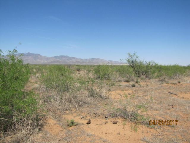 TBD S Narita Lane #163, Willcox, AZ 85643 (#21709793) :: Gateway Partners at Realty Executives Tucson Elite