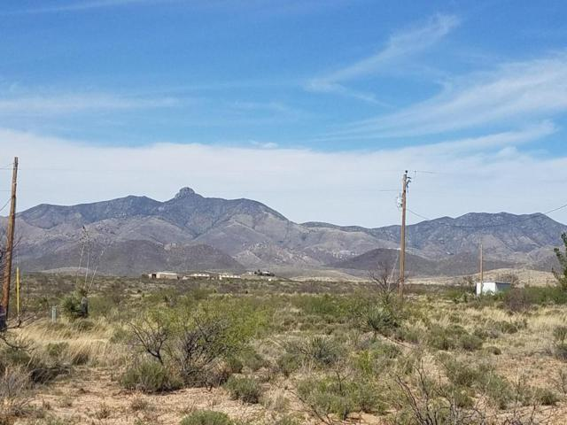 38 ac. S Bascom Trail #60, Willcox, AZ 85643 (#21710988) :: Long Realty Company