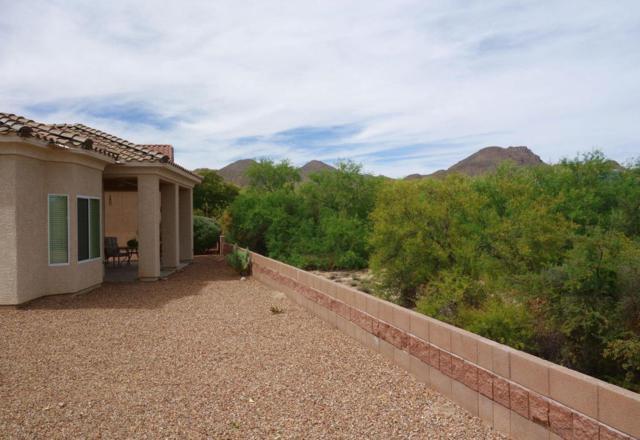 5198 W Desert Song Place, Marana, AZ 85658 (#21714240) :: Long Realty - The Vallee Gold Team