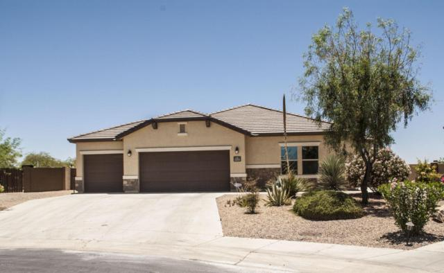 11251 W Sandby Green Place, Marana, AZ 85653 (#21716506) :: The Anderson Team | RE/MAX Results