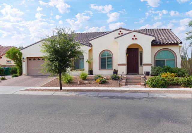251 W Calle Las Tunas, Sahuarita, AZ 85629 (#21716570) :: The Anderson Team | RE/MAX Results