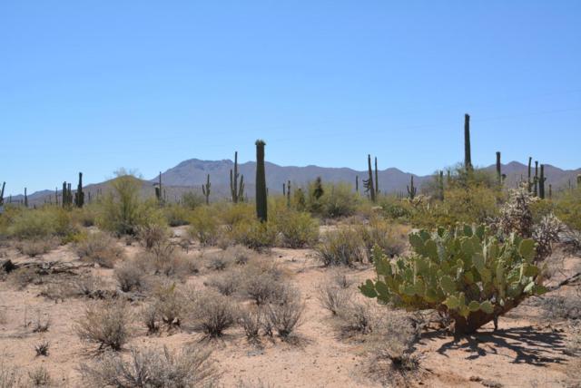 0 W Rudasill Road West, Tucson, AZ 85743 (#21716633) :: Long Realty Company