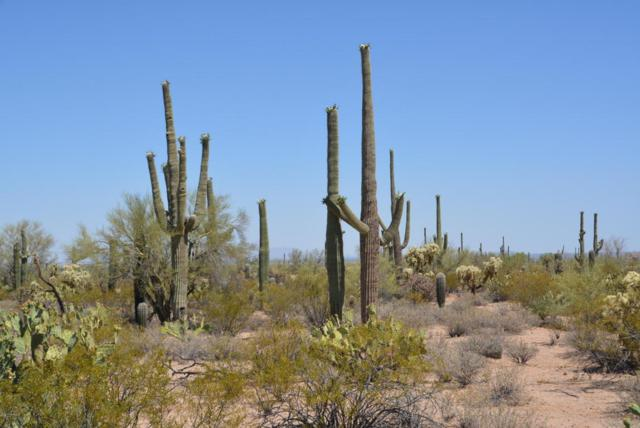 0 W Rudasill Road -East, Tucson, AZ 85743 (#21716635) :: Long Realty Company